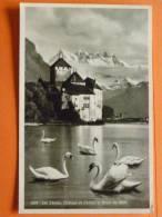 E1-Suisse-lac Leman-chateau De Chillon Et Dents Du Midi - Svizzera