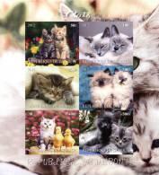 DJIBOUTI SHEET IMPERF CATS - Katten