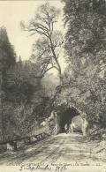 Grande Chartreuse Route Du Desert Un Tunnel - Chartreuse