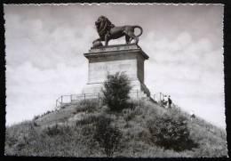 Leeuw Van Waterloo  -  Le Lion De Waterloo  -  Waterloo Lion - Waterloo