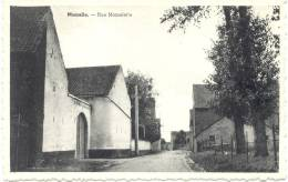 MOMALLE (4350) Rue Momelette (carte Horizontale ) - Remicourt