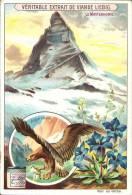 Image Publicitaire - LIEBIG - Le Matterhorn - Aigle Royal - Gentiane - Publicité