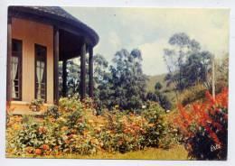 Cameroun--DSCHANG--Jardin Du Centre Climatique Alt 1380m---cpm éd Arts Graphiques - Cameroun