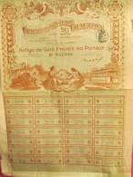 Compagnie Générale De Traction/Action De 100 Francs Au Porteur /PARIS/1902         ACT34 - Transports