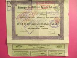 Compagnie Immobiliére Et Agricole Du CANADA/Action De Capital De 250 Francs Au^porteur/Anvers /1906        ACT38 - Agriculture