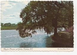 BR49864 Magnolia Platation And Gardens Charlston      2 Scans - Charleston