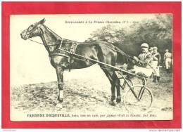 CPA N° 967 / FRANCE CHEVALINE N°5 - 1912 - FABIENNE D' OCQUEVILLE, BAIE NEE EN 1906,PAR JAMES WATT ET ROSETTE,PAR ILOTE - Hippisme