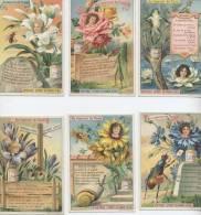 Chromo  Liebig Au Royaume De Flore Femme Fleur - Liebig