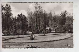 4792 BAD LIPPSPRINGE, Kaiser-Karls-Park 1963 - Bad Lippspringe