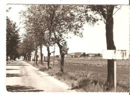 Thezan. Entrée Du Village. - Francia