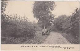 16962g GRUBBENBOSCH - Everberg - Kortenberg