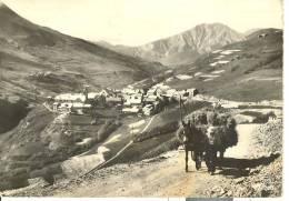 FRA023 - Paysages Des Alpes - Le Chazelet - Rentrée Des Foirs - Carro Asino Donkey - Autres Communes