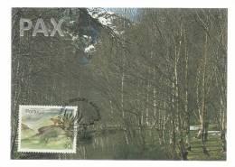 PORTUGAL - SERRA DA ESTRELA - RESERVAS E PARQUES NATURAIS - BPC 70 - 2 SCANS - CARTE MAXIMUM - MAXICARD - Maximum Cards & Covers