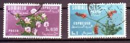 SOMALIA  ITALIANA ESPRESSO   1955  USATO  2 VALORI - Somalie