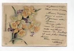 CPA  Fantaisie : Fleurs Pétunia   1906  A  VOIR  !!!! - Autres