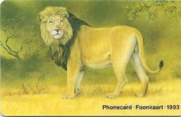 CARTE-PUCE-1993-SUD AFRIQUE-LION SAVANE-R° GLACE-TBE-LUXE-RARE - Oerwoud