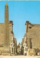 *EGITTO - LUXOR* - Cartolina NUOVA