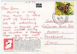IRELAND-GREETINGS FROM GALWAY (PUBL.JOHN HINDE) / THEMATIC STAMP-BUTTERFLY - Galway