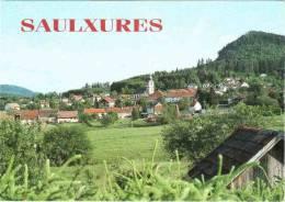CPM 67 (Bas-Rhin) Saulxures - Vue Générale - Andere Gemeenten