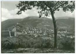 Italy, Italia, ASSISI, Panorama Generale, Unused Real Photo Postcard [13455] - Perugia