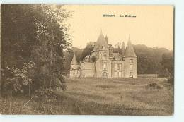 BRUGNY : Le Château. 2 Scans. Edition NG - France