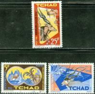 REPUBBLICA DI CIAD, CHAD, REPUBLIQUE DU TCHAD, FAUNA, ANIMALI AFRICANI, 1965, FRANCOBOLLI ANNULLATI, Scott 106,107,109 - Tchad (1960-...)