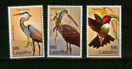 Lesotho 2007,3V,part Set,birds,vogels,vög El,oi Seaux, Pajaros,aves,MNH/Po Stfris(D1537) - Vogels