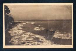 Deutschland Braun Weiße Ansichtskarte Bodensee Brandung Nicht Gelaufen 1900 - Deutschland