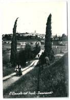 Cpsm: ITALIE S. DANIELE Del Friuli Panorama 1958 - Udine