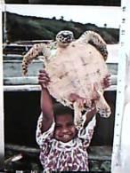 NUOVA  CALEDONIA NOUMEA MELANESIA NOUELLE CALEDONIE TARTARUGA PLAGE  SAN MAURICE BEACH N1990  ED12348 - Nuova Caledonia