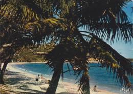 Nouvelle Calédonie,nouméa,archipel D´océanie,océan Pacifique,prés De L´australie Et Nouvelle Zélande,ANSE VATA,PLAGE - New Caledonia