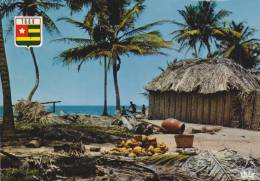 Afrique,africa,TOGO,prés Du Bénin,ghana,DAHOMEY,VILLAGE,PAILLOTTE,paysan,recolteur,palmier,fruit Exotique,metier - Togo