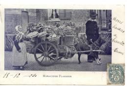 Maraichers Flamands Carte Animee Bel Attelage De Chien - Belgique