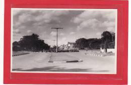 AFRIQUE / AFRIQUE AUSTRALE / RHODESIE / PHOTO DE KWEKWE (Que - Que) / Une Avenue - Zimbabwe