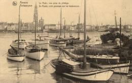 BELGIQUE - ANVERS - ANTWERPEN - La Rade; Vue Prise Du Pilotage - De Reede; Zicht Genomen Van Het Loodswezen. - Antwerpen