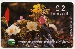PHONECARD : CYPRUS TELECOMMUNICATIONS AUTHORITY £2 - AKAMAS FOREST - Cyprus