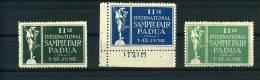 PADOVA II FIERA CAMPIONARIA 1920 3 ERINNOFILI ESTERO IN INGLESE - Cinderellas