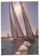 XW 947 Regate A Vela - Barca A Vela - Sailing Boat - Bateau à Voile - Segelboot / Non Viaggiata - Barche