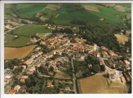 MONTASTRUC 31 - Multivues - CPSM GF (1988) N° 140 1 -  Haute Garonne - France