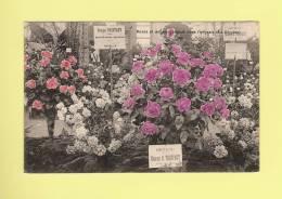 *  PUB..Georges TRUFFAUT,  Sur CPA...Roses Et Oeillets Obtenus Avec L'engrais La Biogine   - ( 2 Scans ) - Advertising