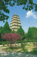 Big Wild Goose Pagoda, Xian, China Travel & Tourism Press Unused - China