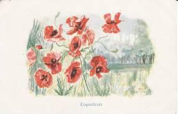 Coquelicots , Signée Charles Alphonse MOREL, - Illustratoren & Fotografen