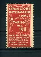 TORINO ESPOSIZIONE INTERN INDUSTRIE LAVORO 50° PROCLAMAZIONE REGNO ITALIA 1911 - Erinnophilie