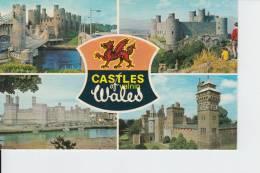 Castles Of Wales - Autres