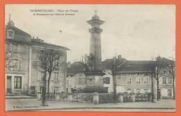 T234, Rambervilliers, Place Des Vosges, Monument Du Général Richard, Petite Animation, Circulée 1916 - Rambervillers