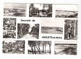 CSM : 40 - Landes : Souvenir De Moliets Et Maa : Multivues ( 10 ) - France