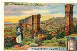Chromo Ancienne  Liébig Série Vestiges De La Domination Romaine En Afrique Ruines De Carhage Près De Tunis - Liebig