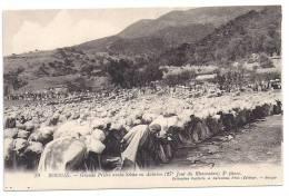 CPA Bougie Bejaia Algérie Grande Prière Sebha Ou Achrine (27 ème Jour Ramadan) 3 ème Phase édit A. Caravano N°79 - Bejaia (Bougie)