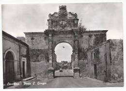 Cavallino - Porta San Giorgio - Lecce - H1076 - Lecce