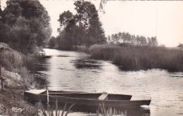 21739  Trois Cpsm (petit Format) Pezou, Vue Du Loir CIM, Vue Sur Le 741 Cim, Bords Du Loir 7 Cim -barque - France
